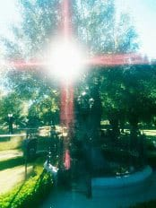 From the Shrine at Prado Nuevo … Taken recently by our dear friend, Tony, at the Ash Tree Where Our Blessed Mother first appeared:.