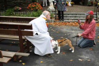 The annual blessing of the animals